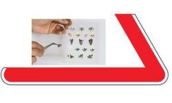 Pflanzen, Laser-Cut minis